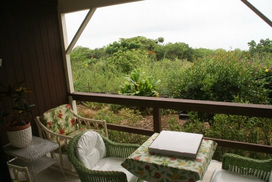 Hale Ho'ola B&B: View from the Lanai