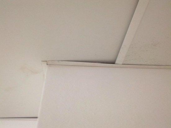 La Quinta Inn Decatur: Mold in bathroom