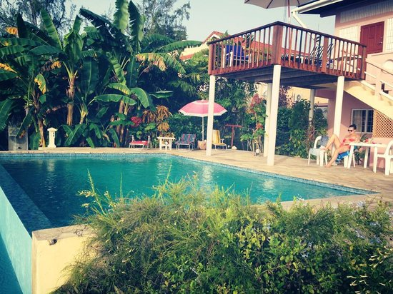 Birdie's Nest: Pool and patio