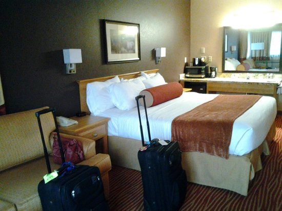 The Estes Park Resort : Bed, couch, sink in main room