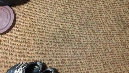 Quality Inn Downtown Convention Center: One of many carpet stains