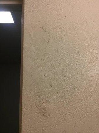 Quality Inn Downtown Convention Center : painted over water damage