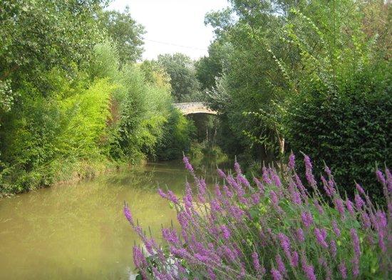 Camping Arc en Ciel: Three Sautets Bridge from Camping Arc-en-Ciel