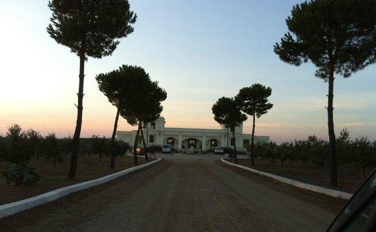 Agri Hotel Conte Salentino: Il viale d'ingresso
