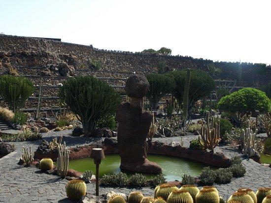 Jard n de cactus picture of jardin de cactus guatiza for Jardineras de cactus