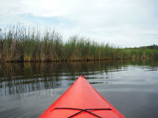 Karen's Kayaks : Setting off