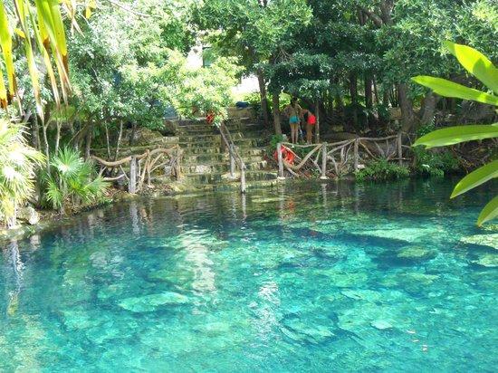 cenote cristallino picture of sandos caracol eco resort. Black Bedroom Furniture Sets. Home Design Ideas