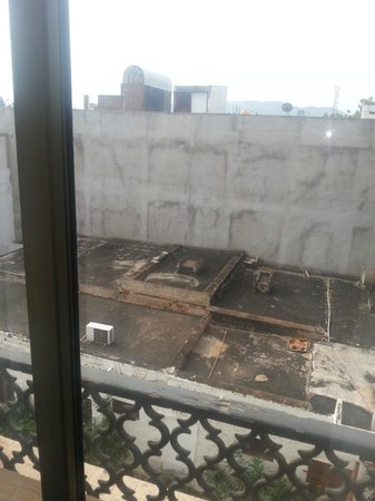 Hotel Krishna Palace: View from the room