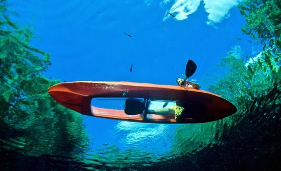 Coconut Reef Glass Bottom Canoes: Glass bottom kayaks