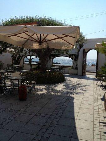 Hotel La Scogliera: parte del giardino