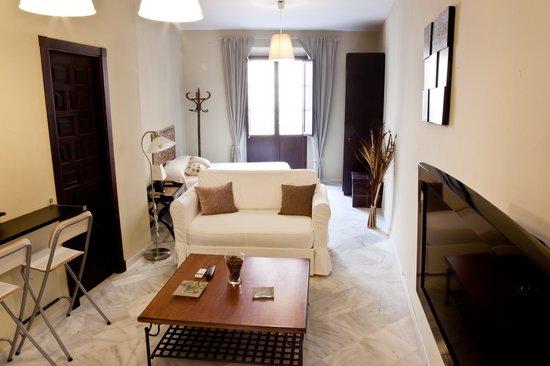 Apartamentos Puerta de San Esteban : Estudio con dormitorio y salón
