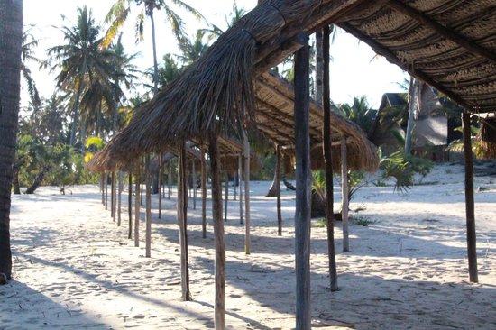 Areia Branca Lodge: Camping