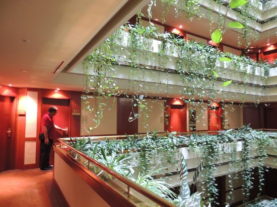 Eurostars Gran Hotel Santiago: Muito verde na decoração