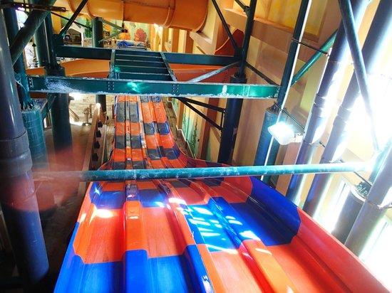 جريت وولف لودج ويسكونسين ديلز: The carpet slides from above