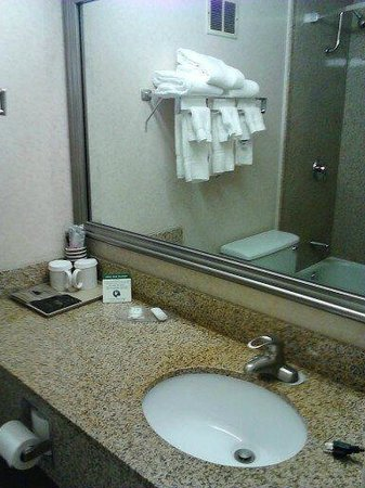 Clarion Inn & Suites - Fairgrounds : Bathroom