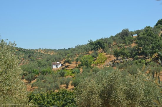 Altabrida Alojamiento Rural: tranquility