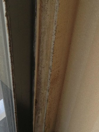 Best Western Plus The Inn At Hampton: Mold on wall by door