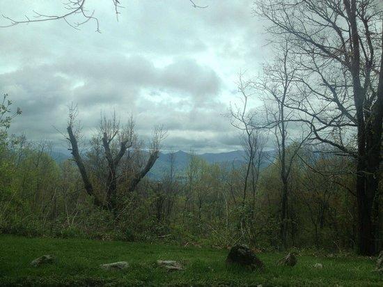 Fire Mountain Inn: View