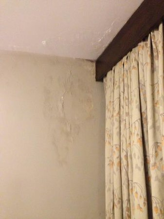Stanpoli Hostel : this looked like mold on the ceiling and wall.