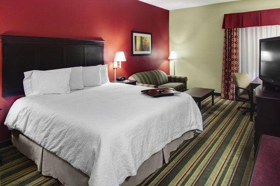 Hampton Inn Richmond Mechanicsville: King Guest Room