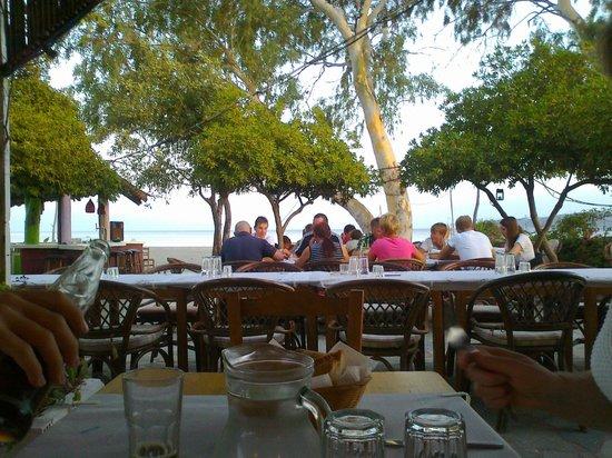 Taverna 'Takis sulla spiaggia di Mavronoumi