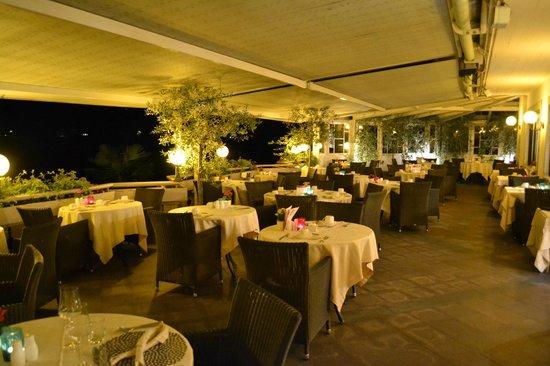 Hotel Weinegg: terrazza ristorante