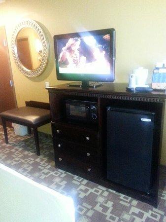 Holiday Inn Express Hotel & Suites Foley: TV, Fridge, Microwave