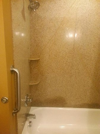 Holiday Inn Express Hotel & Suites Foley : Shower