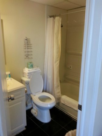 "Hotel Charlee Villas by the Beach (Former Palm Villa): bathroom. see the ""shelving"" in shower,useless"