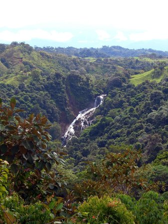 Hotel Paraiso Carlisa: The large waterfall - horseback ride to it is available.