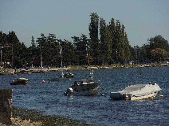 Birch Bay Get Away : Just across the road