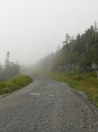 Stowe Mountain Auto Toll Road: The road ahead.