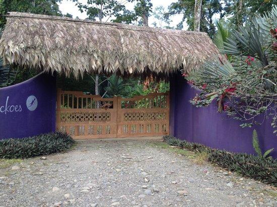 Puerto Viejo Beach: la elaborada arquitectura del caribe se refleja en el portón