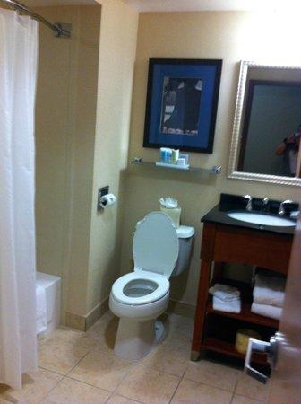 Wyndham Garden Philadelphia Airport: lavatory view-