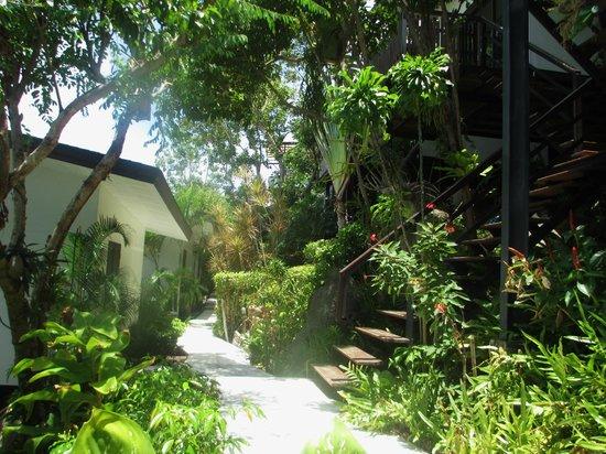 Chintakiri Resort: hotel grounds
