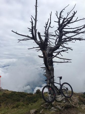 Sporthotel Manni: mountainbiken op de Penken