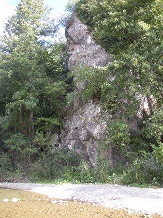 Foresta di Berignone: Il masso delle fanciulle