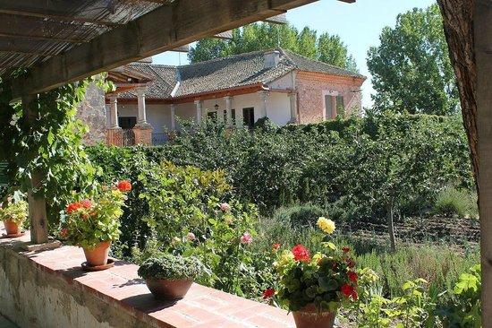 Palacio de Hoyuelos: jardín