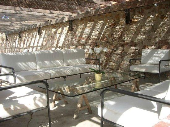 Palacio de Hoyuelos: pérgola