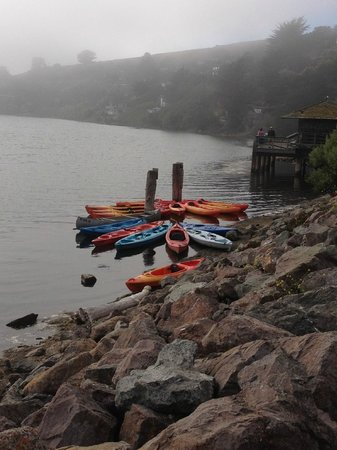 Cafe Aquatica: View of  tethered kayaks from the deck