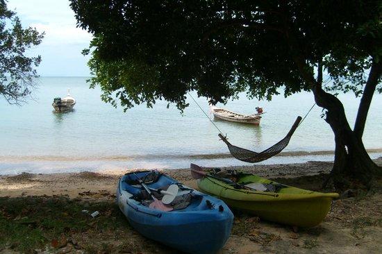 Banyan Bay Villas: Beach area
