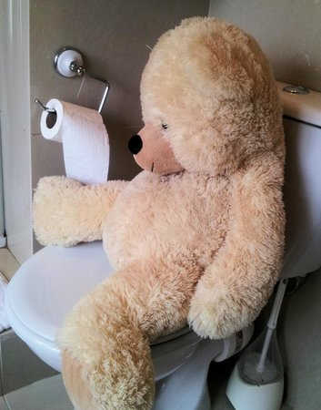 The Merchant House: Giant teddy - last thing you need in a tiny room - occupies the only seat