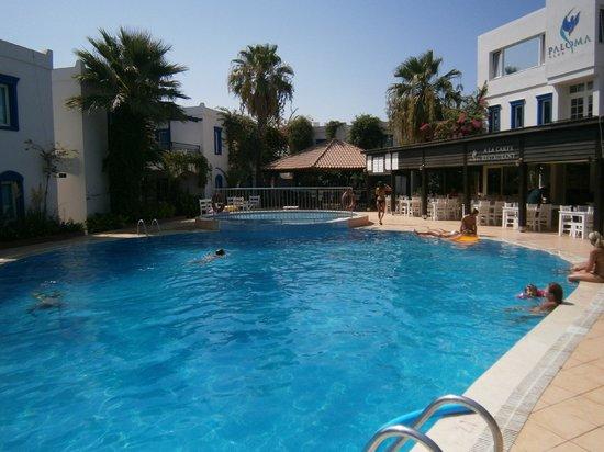 Club Paloma Apartments: Hotel