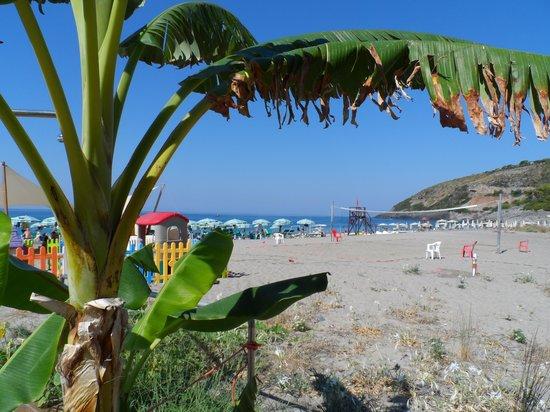 """Villaggio Touring Marina di Camerota: il """"banano"""""""