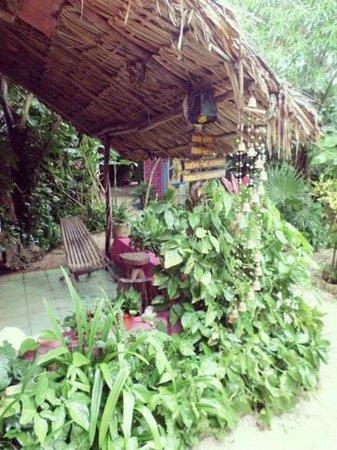 Hostel Candelaria: garden
