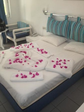Turihan Hotel: beautiful flowers in clean pretty room