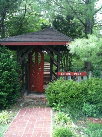 Briggs Pond: Entrance
