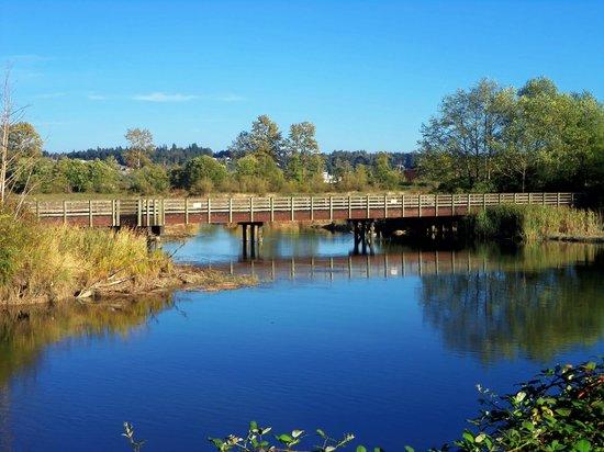 Spencer Island Park