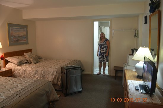 Fitzgeralds Motel: guest room