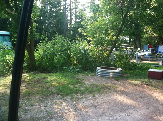 Petoskey State Park: Campsite with firepit